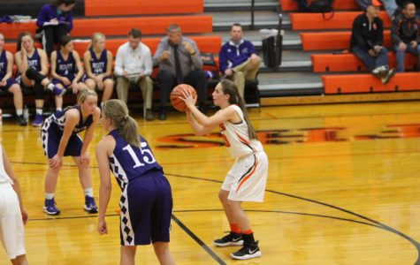 Vipers strike, but the cougars escape